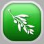 www.olivevideoeditor.org